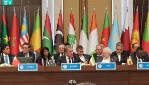 Photo of OIC Foreign Ministers Pass Resolution on Kashmir Issue