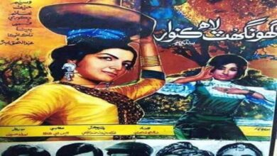Photo of Brief History of Classic Sindhi Cinema