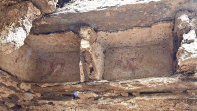 Photo of Archaeological Site of First Century AD Discovered in Swat