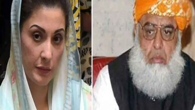 Photo of Maulana and Maryam Suspended Political Activities Due to Illness