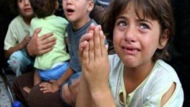 Photo of Genocide in Gaza