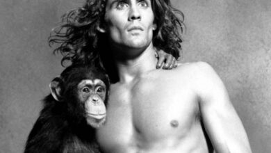 Photo of The Hero of the Hollywood Movie 'Tarzan' Died in a Plane Crash