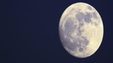 Photo of Super Full Moon Will Be Today