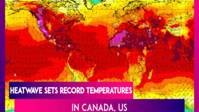 Photo of 233 Dead As Record-breaking Heatwave Grips Canada