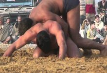 Photo of Wrestler Dies During Fight in UP's Moradabad, Video Goes Viral